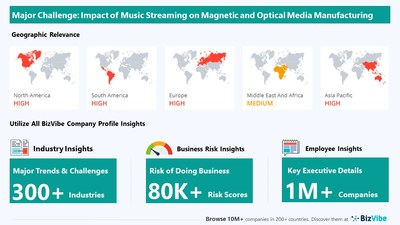 Snapshot of key challenge impacting BizVibe's magnetic and optical media manufacturing industry group.