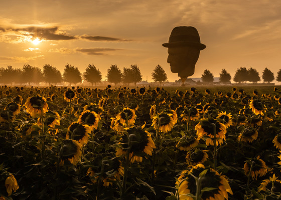 """A Vincent van Gogh hot air balloon gazes down upon a field of sunflowers in suburban Chicago as """"Immersive Van Gogh"""" announces that the smash hit experiential exhibit will continue through February 6 at Chicago's Lighthouse ArtSpace, 108 West Germania Place. Tickets to the new block go on sale Oct. 13 at noon CT. Photo credit: Kyle Flubacker."""